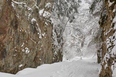 Snowy trail through canyon