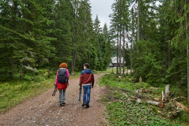 Family of hikers on mountain trail