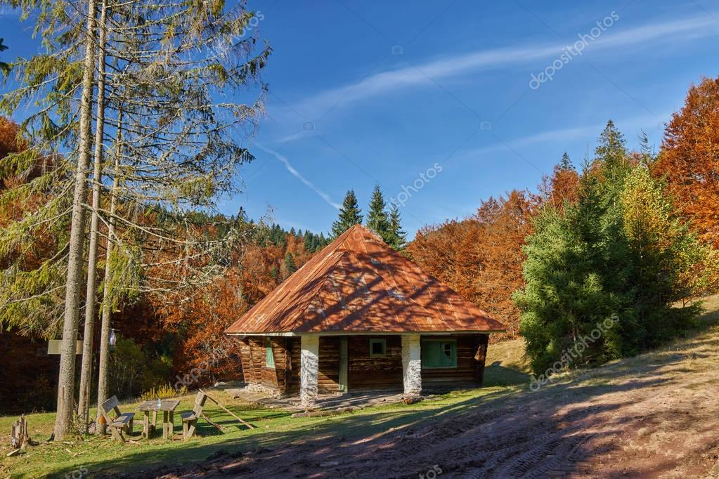 Cabin in woods on mountain