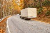 Kamion rychlosti přes les