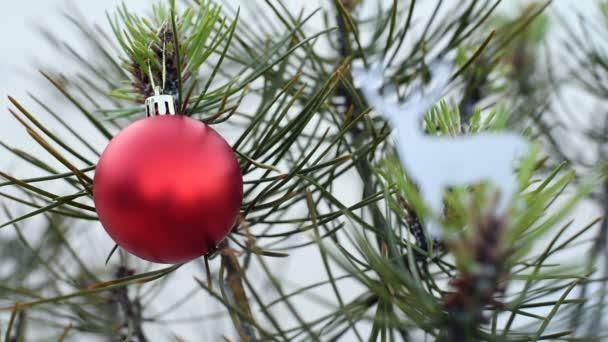 Vánoční strom a dovolená ornament v zimě smyčka klip