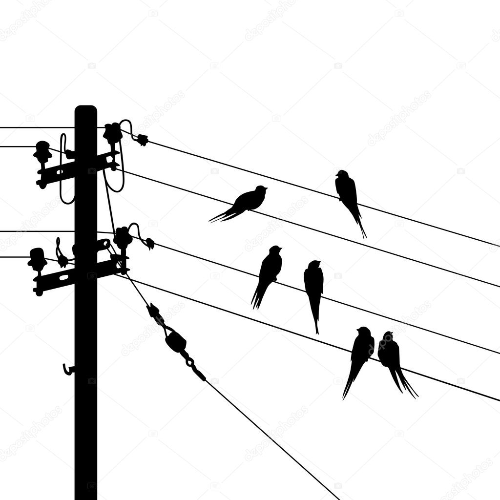Birds migration vector illustration