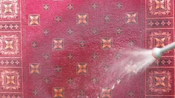 Alfombra se lava con un chorro de agua — Vídeo de stock © sever180 ...