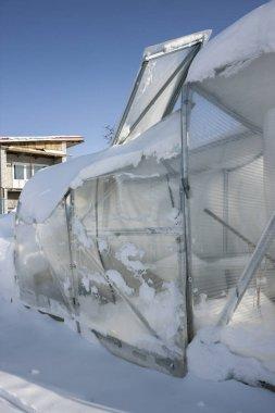 Broken polycarbonate greenhouse in garden as a result of heavy snow