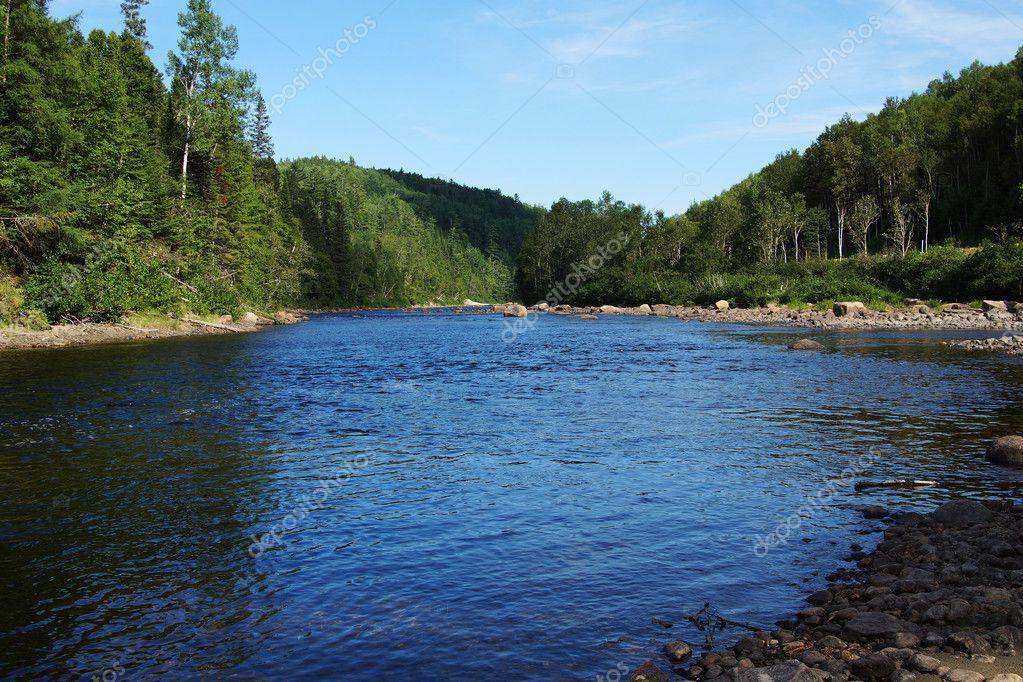 Salmon river in Quebec