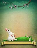 weiße Kaninchen auf grünem Rasen