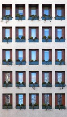 Windows Modern Building