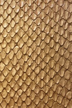 Gold Snake Leather