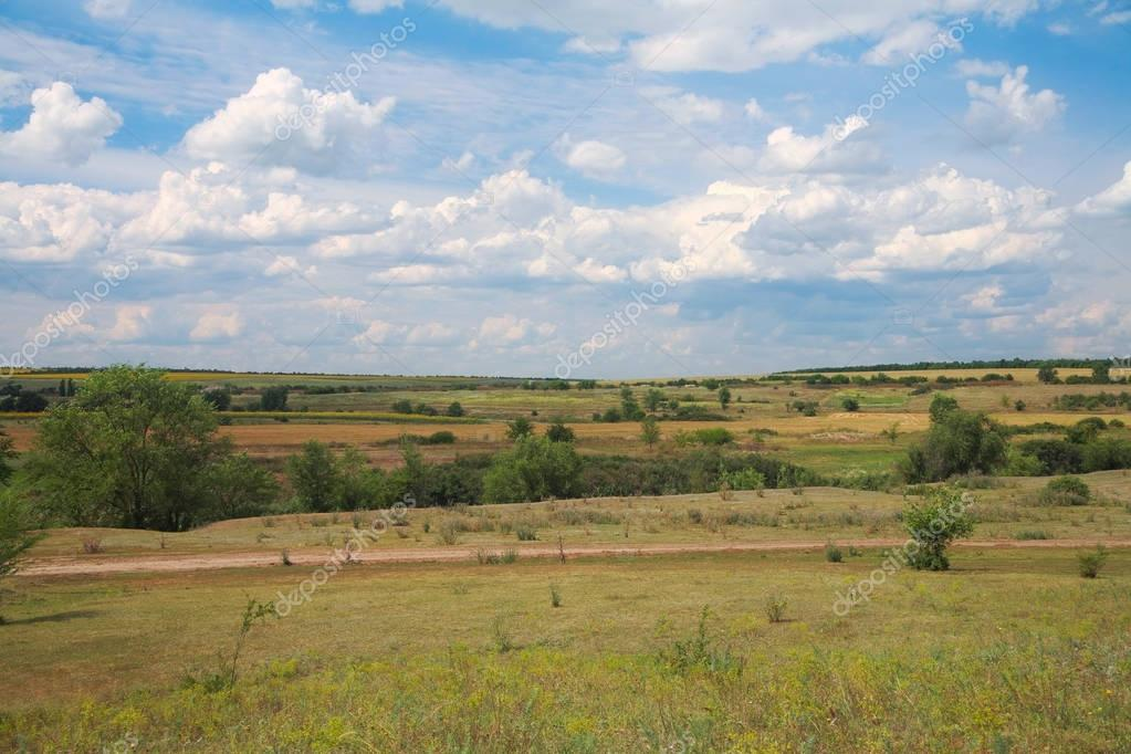Countryside landscape summer