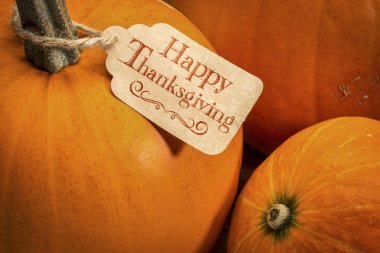 pumpkin with Happy Thanksgiving  tag