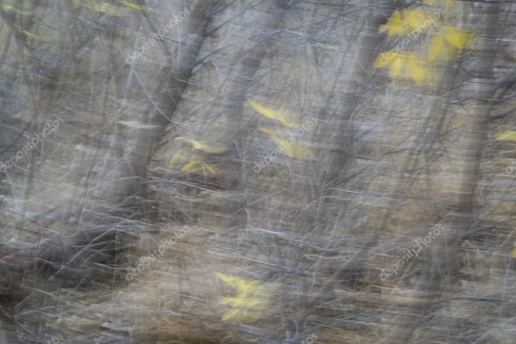 Falling leaves motion blur abstract