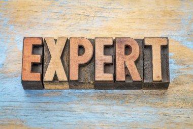 expert word in wood type
