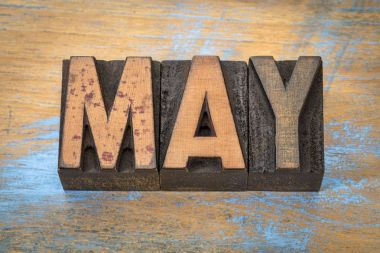 May month in vintage letterpress wood type against grunge wooden background stock vector