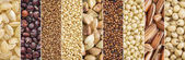 Fotografie gluten free grains collection