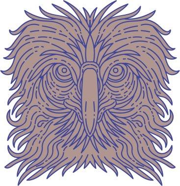 Great Philippine Eagle Head Mono Line