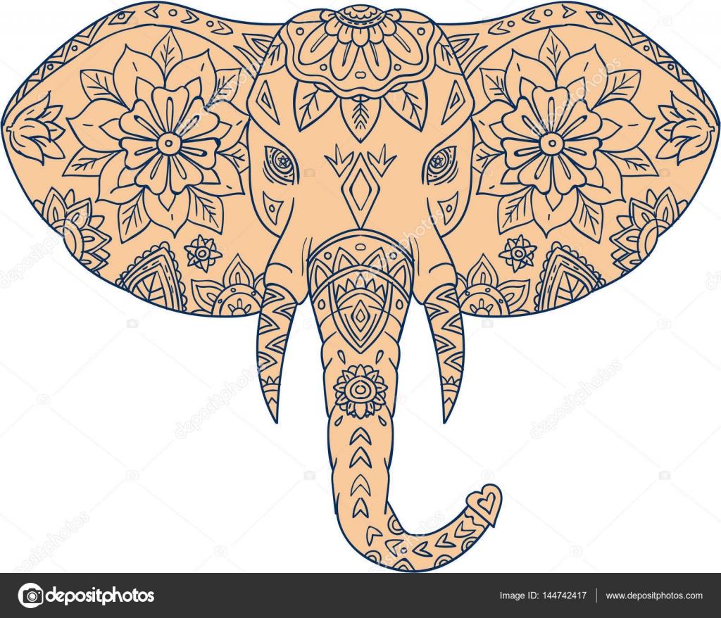Elefante cabeza Mandalaa colmillo — Vector de stock © patrimonio ...