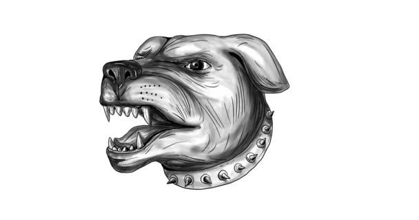 Agresszív Rottweiler őrző-védő kutyák fejét, 2d animáció