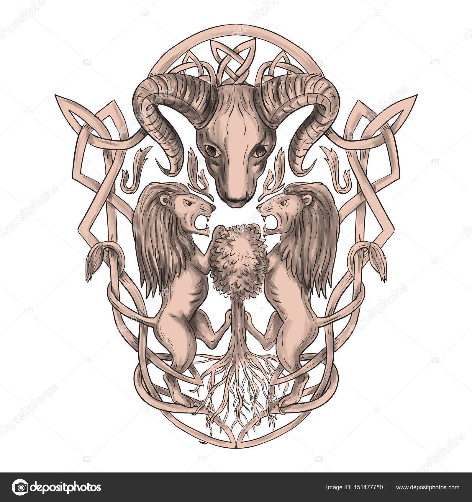Bighorn sheep lion tree coat of arms celtic knotwork tattoo tattoo style illustration of stylized bighorn sheep head with two lion supporters climbing on tree with celtic knot called icovellavna plait work or buycottarizona Gallery