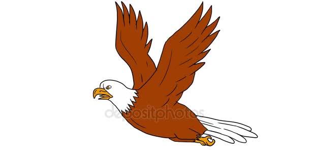 Águila calva volando animación 2d — Vídeo de stock © patrimonio ...