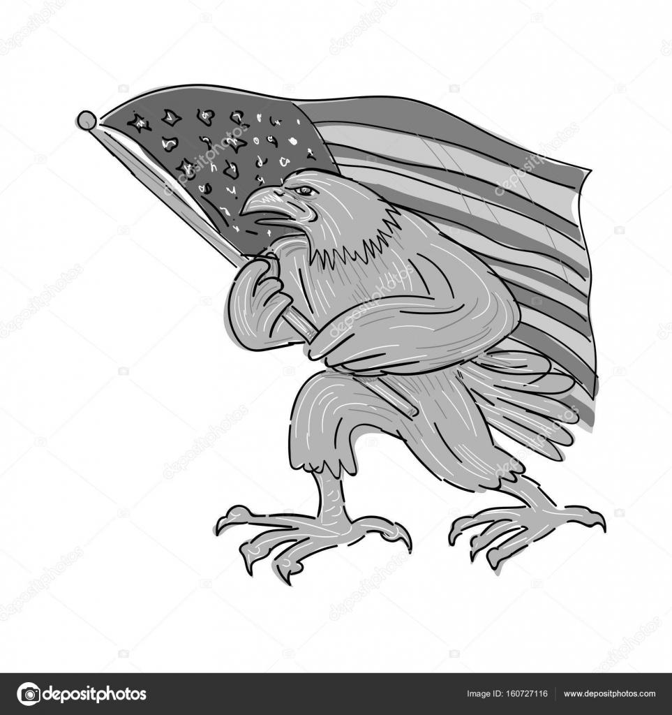 Bandera De Estados Unidos Animada Para Colorear American Eagle