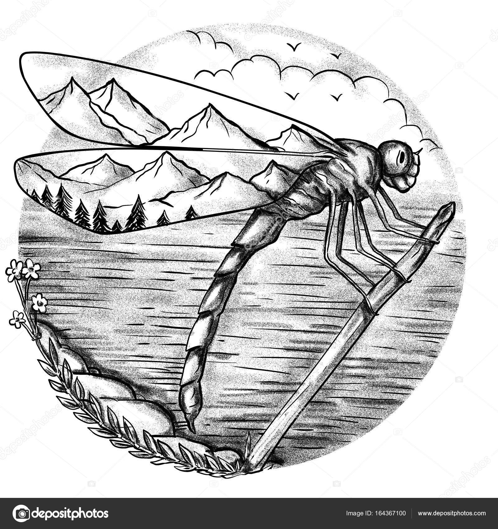 Libélula de montaña dentro del tatuaje de alas — Fotos de Stock ...