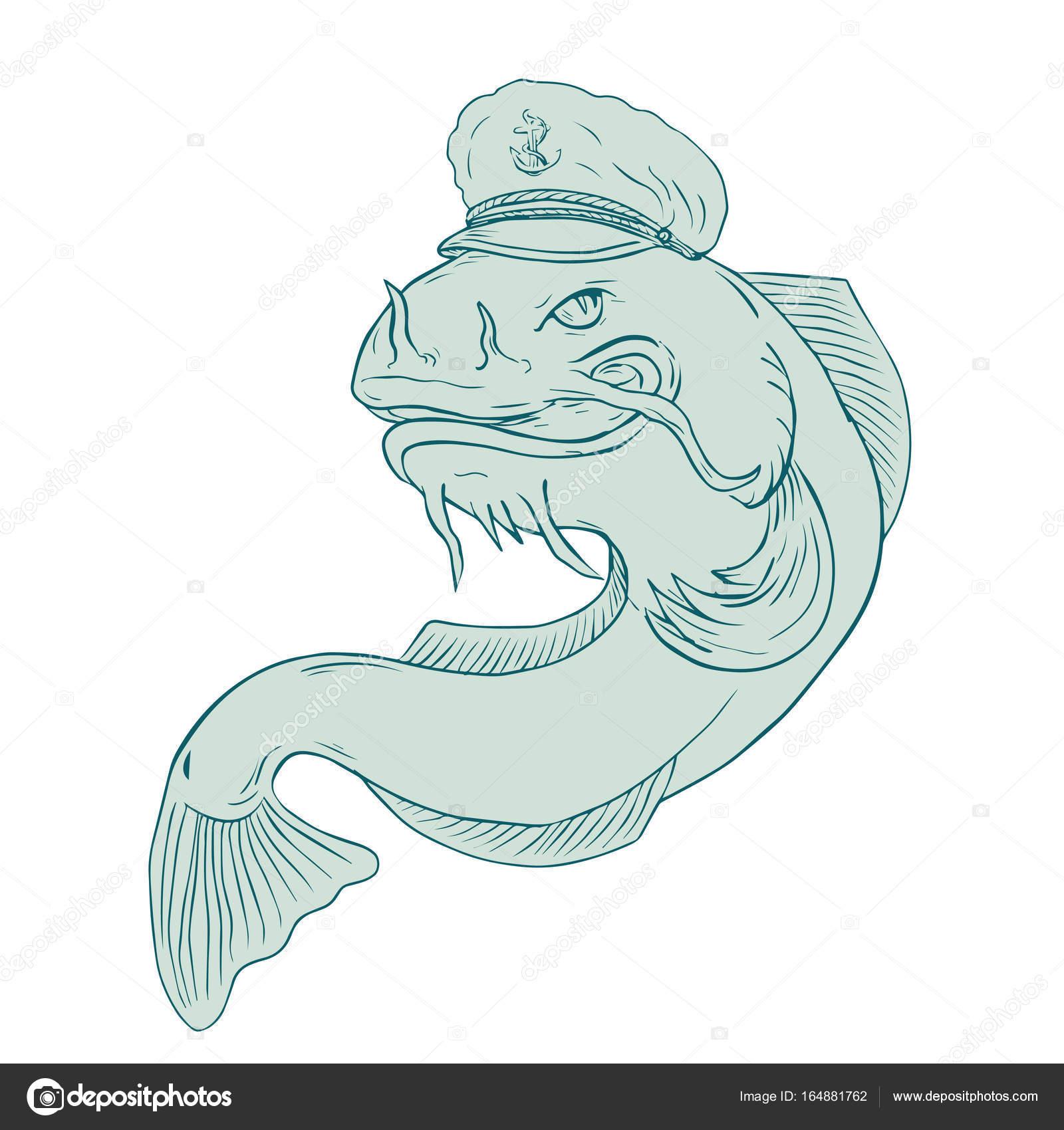 captain catfish drawing stock vector patrimonio 164881762