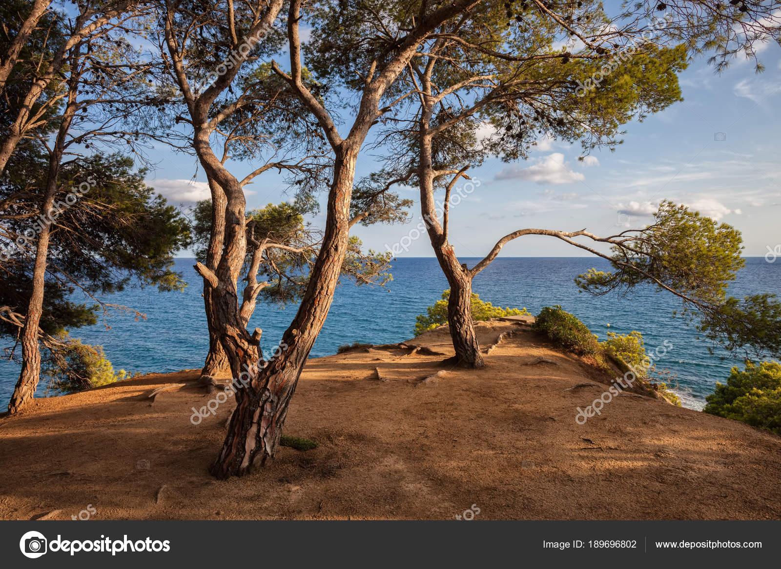 Acantilado Terraza Mirador Del Mediterráneo Foto De Stock