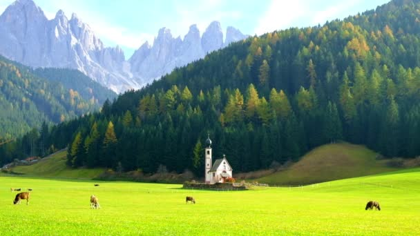 Beautiful autumn forest with baroque Church of St. Johann in Val Di Funes, Dolomites, Italy