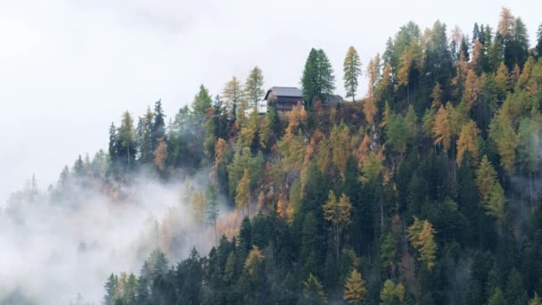 Forest trees with clouds and mist fog  and red ski lift in Dolomites, South Tyrol, Italy