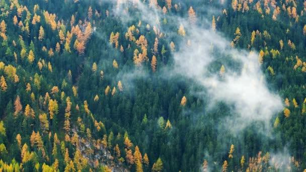 Lesní stromy s mraky a mlha mlhy a červená lyžařský vlek v Dolomitech, Jižní Tyrolsko, Itálie