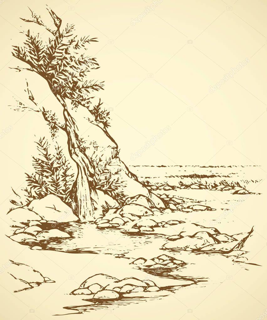 Vector landscape. Tree near a mountain stream
