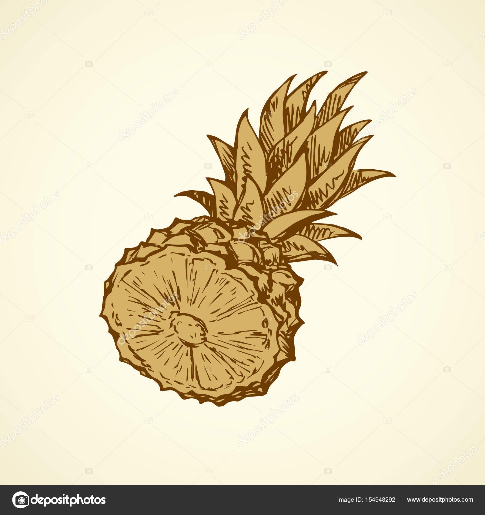 Ananas Rysunek ananas. wektor rysunek — grafika wektorowa © marinka #154948292