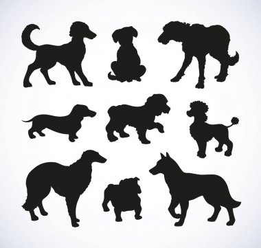 Vector outline drawing. Purebred dogs and mongrels