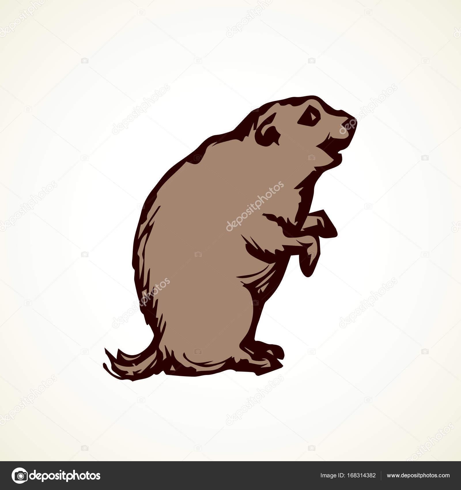 Groundhog Outline