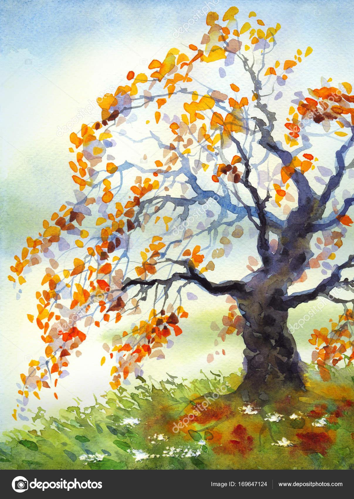 Aquarell Landschaft Herbst Baum In Truben Tag Stockfoto C Marinka