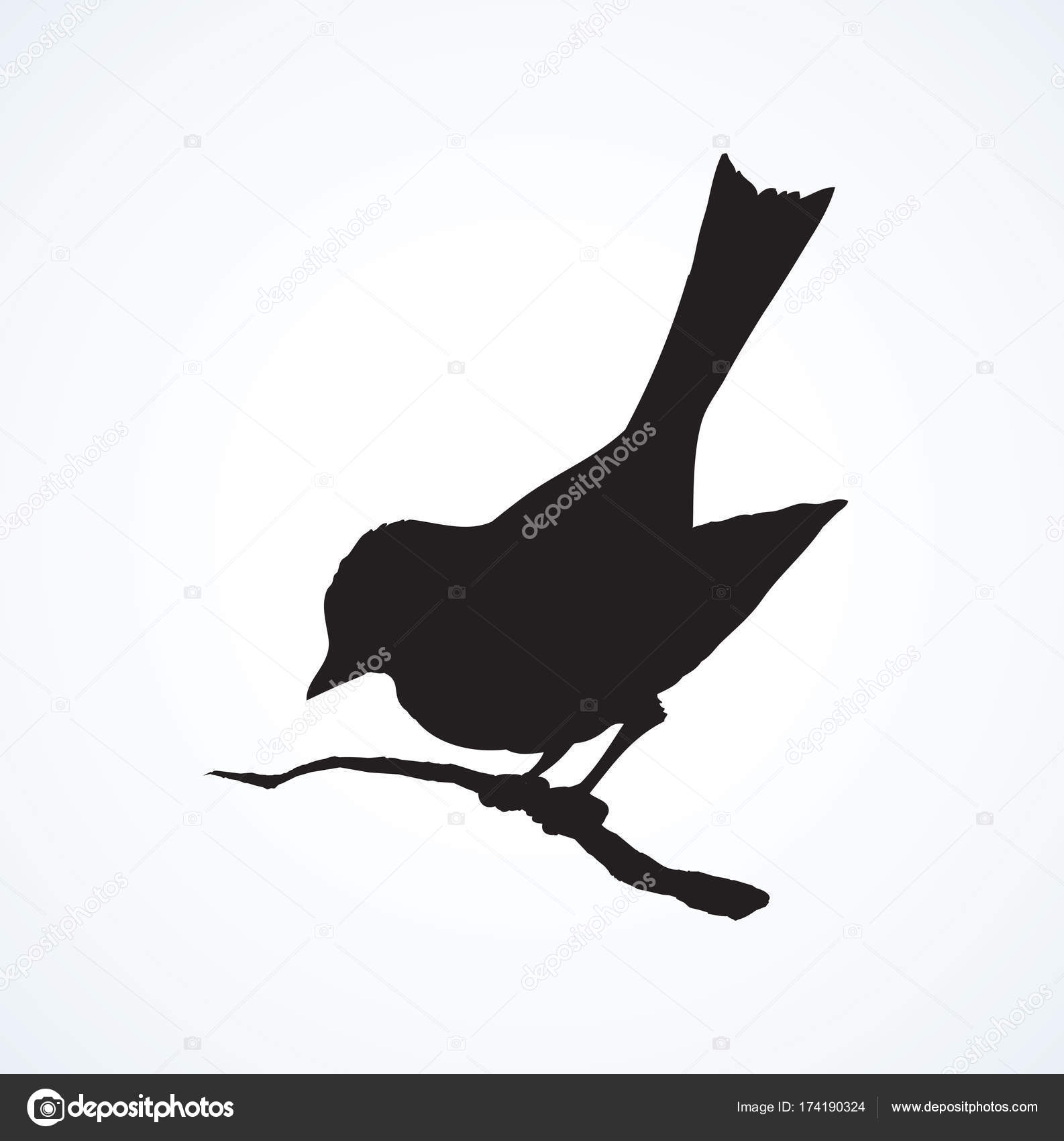 Are Retro black and white tit