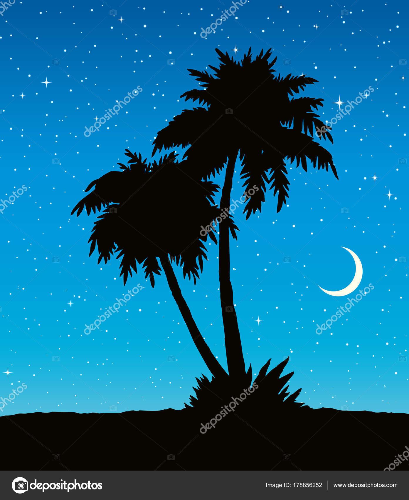 Imágenes Palmeras En La Playa Dibujo Palmeras En La Playa Dibujo