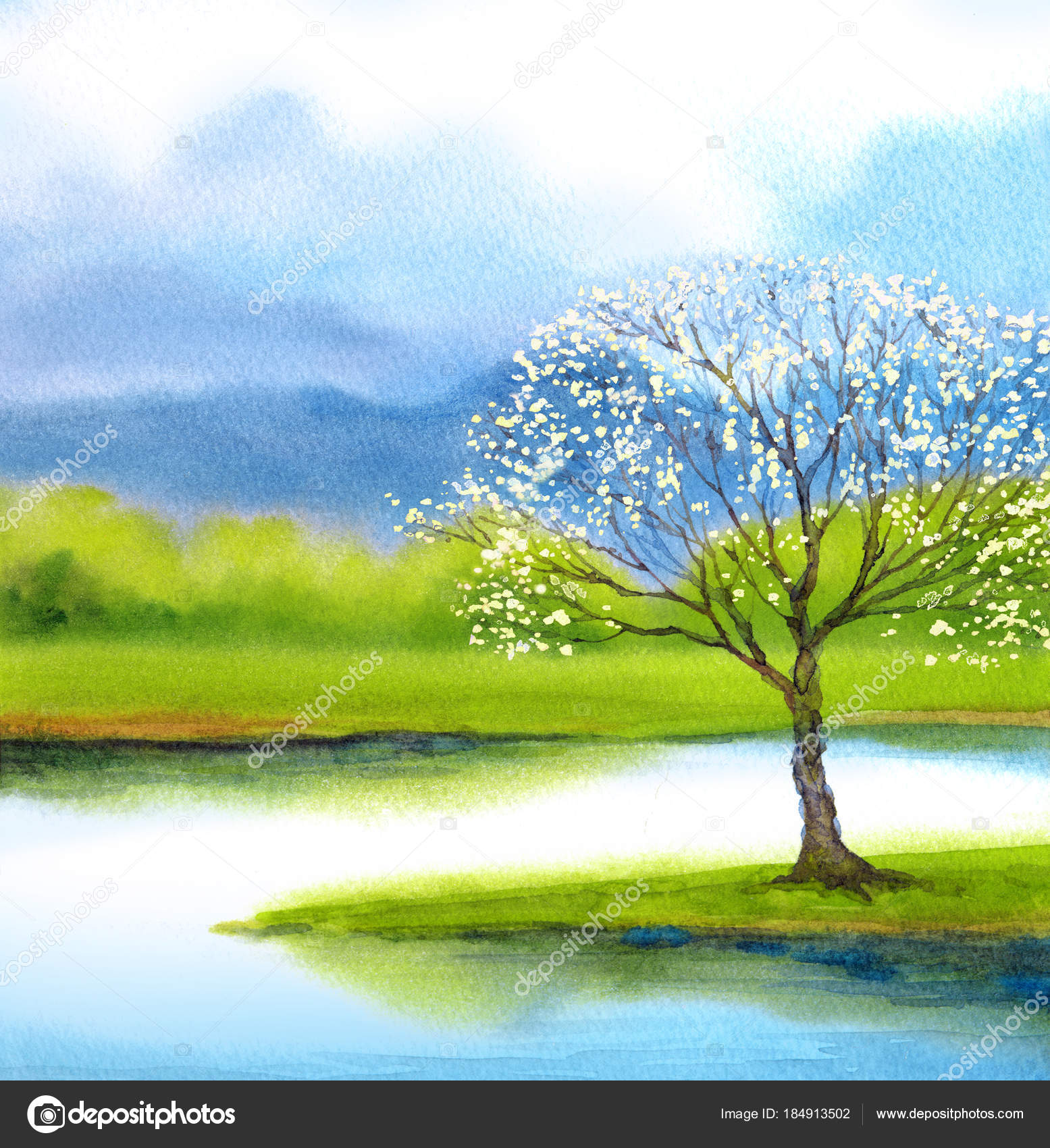 Watercolor Landscape Flowering Tree By Lake Stock Photo