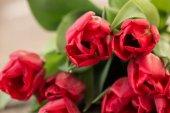 Fiori di tulipano rosso su fondo di legno rustico