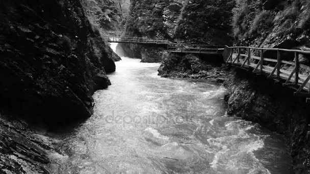 Tekoucí řeky v soutěsce Vintgar, Slovinsko