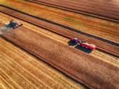 A légi felvétel a össze harvester mezőgazdasági gépi betakarítás