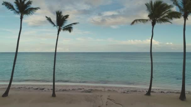 A légi felvétel a pálmafákkal, trópusi szigeten strand, a Punta Cana