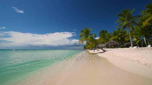 Estate tropicale isola di Saona, Repubblica Dominicana. Concetto di viaggio