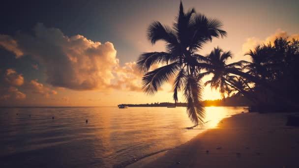 16 Luxury Pubg Wallpaper Iphone 6: Sunrise Tropical Island Beach Caribbean Sea Beautiful