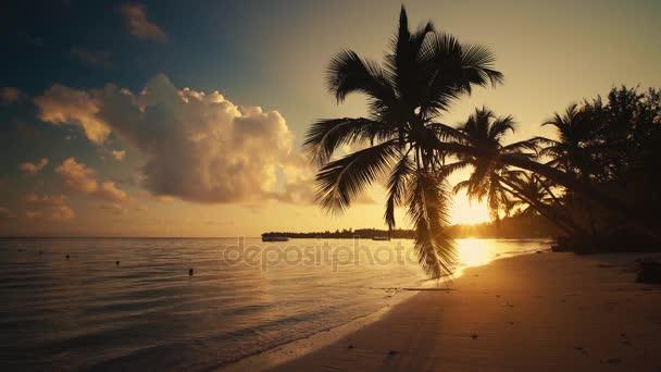 Napkelte felett trópusi szigeten strand, a Karib-tenger és a gyönyörű zöld pálmafák