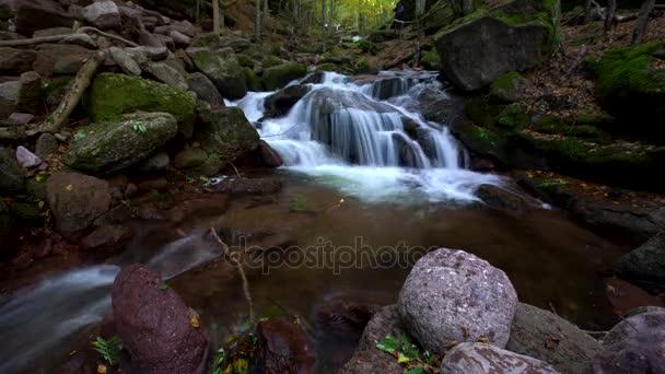 Podzimní lesní vodopád řeka s kameny v horské krajině. Bulharsko, Evropa