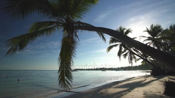 Sziget trópusi tengerpart fehér homok, türkiz tenger víz és kókusz pálmafák között. Punta Cana, Dominikai Köztársaság