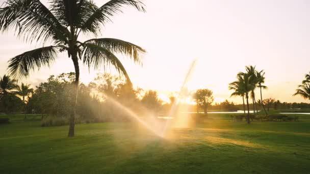 Při zlatém západu slunce se na výstavním hřišti