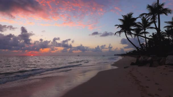 Tropical island. Exotic beach with palms around. Holiday and vacation concept