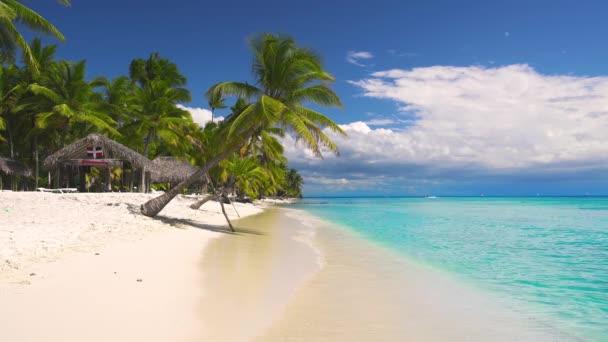 Trópusi sziget. Egzotikus strand tenyérrel. Nyaralás és nyaralás háttere.